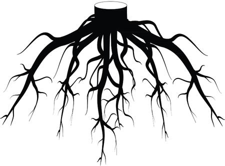Tree roots silhouette Фото со стока - 97309538