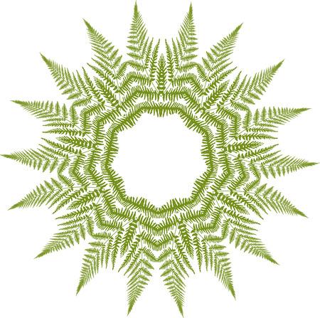 Green fern pattern Vectores