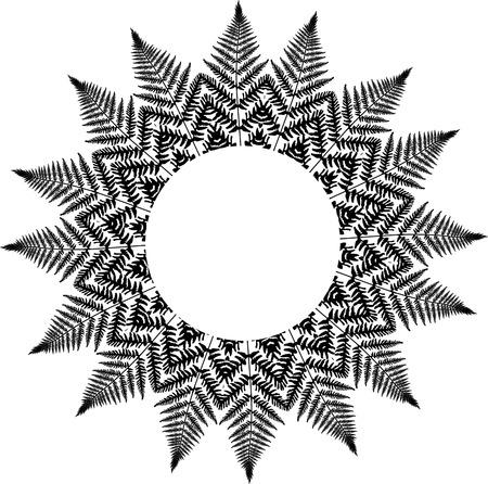 Fern Frame decoration 向量圖像