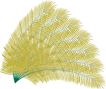 Plam leaves Ilustracja