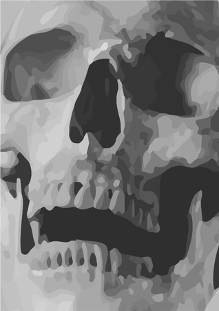 Skull Close up Illustration