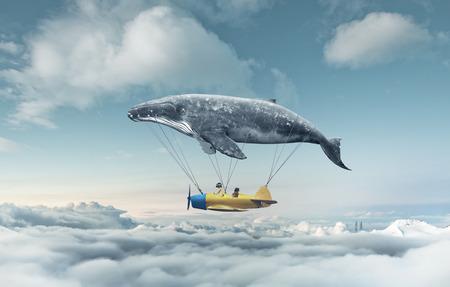 baleine: Prenez-moi au rêve Banque d'images