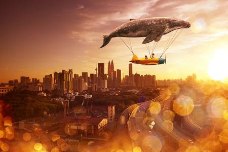 ballena: creo que puedo volar