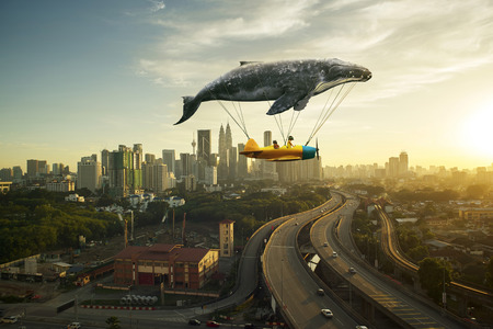 私は信じて私は飛ぶことができます。 写真素材