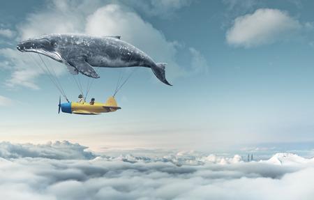 aereo: Portami al sogno