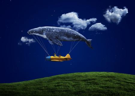 belive: i belive i can fly
