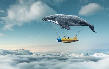 ballena azul: Llévame al sueño
