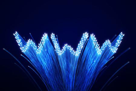 "optic fibers forming the word ""www"" 免版税图像"