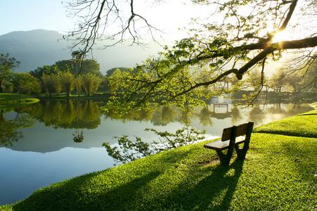 jezior: drewniane krzesło w ogrodzie nad jeziorem w Taiping Malezji Zdjęcie Seryjne