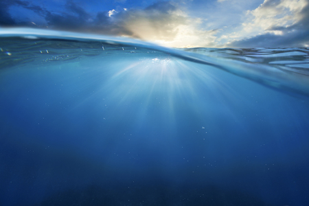 under the sea: ocean half water with sunset sky