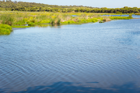 perth: Lake in a Yanchep National Park