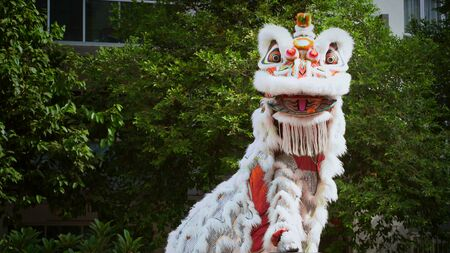 Lion dance performers show during the celebration Chinese New Year in Kuala Lumpur