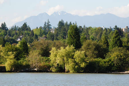 luxuriously: luxuriously green by river Stock Photo