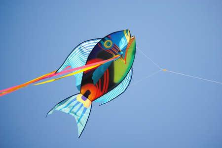 blue fish: Fish Kite on sky