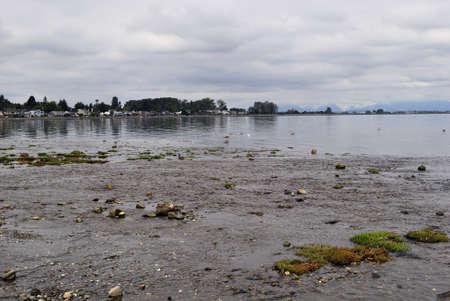 Muddy Beach of the Bay Reklamní fotografie