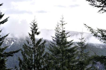 꼭대기가 눈으로 덮인: fog covers snow-capped mountain 스톡 사진