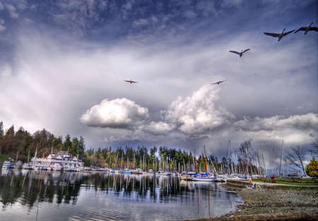 Spring View of Coal Harbor in Vancouver photo