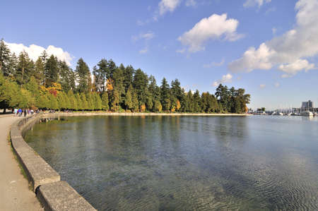 seawall in the autumn photo