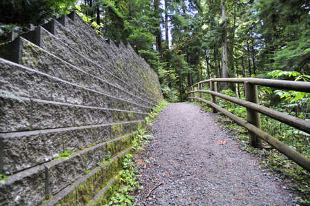 stone wall and wooden railing in the wood photo