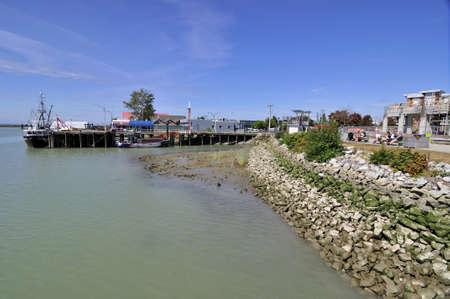 river bank: river bank with rocks