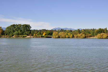 river bank: river bank