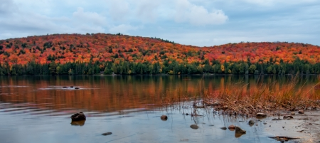 Taken in Algonquin Park, this panorama shows the beauty of the lake side view in the fall