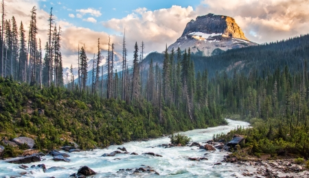 Taken in Yoho National park just as the setting sun lit the one side of this rockey peak