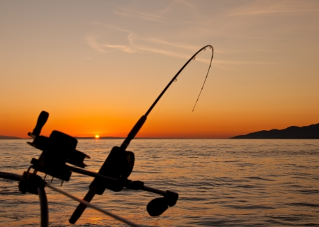 日没でちょうどオフ、バンクーバー島の海岸ダウン談合釣りロッドのシルエットを撮影