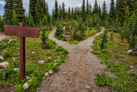 path ways: Showing a path splitting into two going into the woods with a blank signpost  Stock Photo