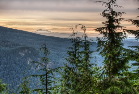 View of forested mountains leading to Mt Baker from Vancouver
