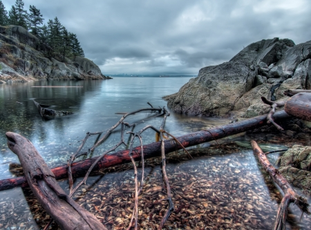Wood along rocky shore with Vancouver skyline in far distance  photo