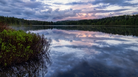 Serene lake reflection with purple sky and foreground plants Stock Photo
