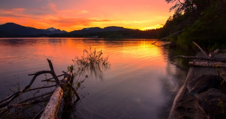 british columbia: Sunset reflect in lake with mountains in distance and log in the water