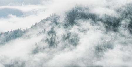 Dramatic clouds hid the forest and winter snow on mountain side
