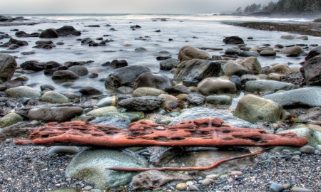 Rocky shore with waves in background and weathered drift wood Stock Photo