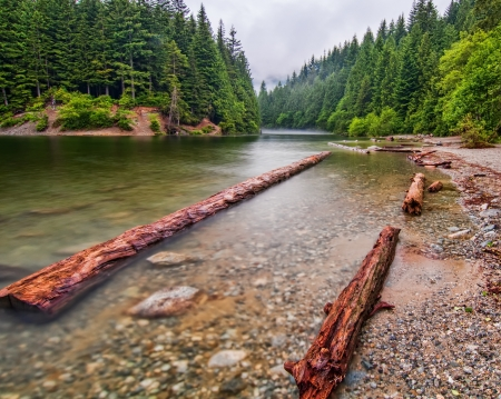 Along the shores of Alouette lake on a calm misty morning  Stock Photo