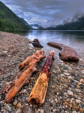 Logs along lake shore with distant clouds
