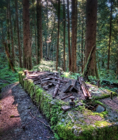 british columbia: The remains of an old mill from the early 1900s in the forest