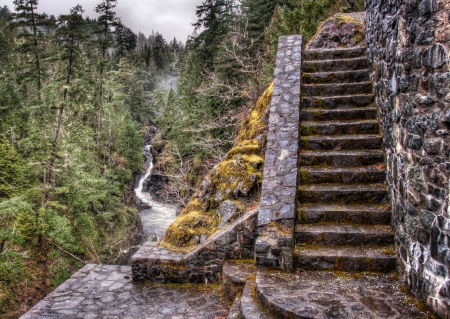 Next to a river are stone stairs in a forest  photo