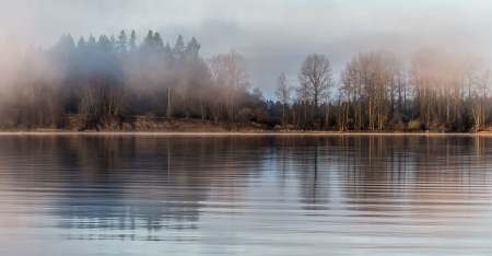 Tree reflected in river on misty morning Stock Photo