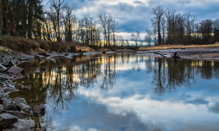 River with reflection of bare trees