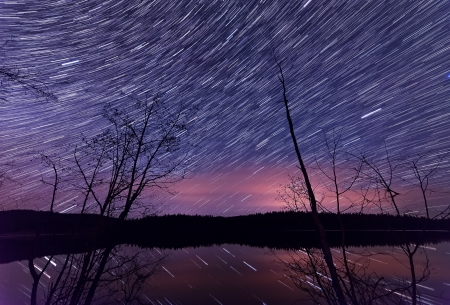 provincial forest parks: Trees and lake in foreground and star trails in the sky