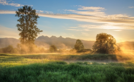 Golden ears mountain in the background as sunrise lights the mist yellow  Stock Photo