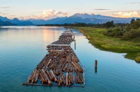 timber harvesting: Distant mountains with logs on river