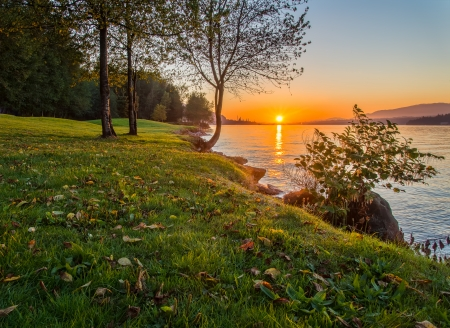 Grassy shore with sunset Stock Photo