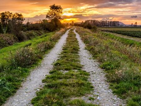 Zonsondergang achter een onverharde weg langs landbouwgrond Stockfoto
