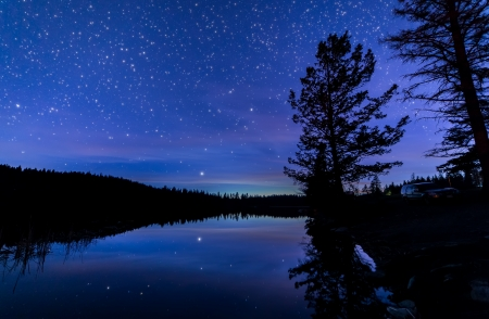 Reflection of stars and trees in lake at night photo