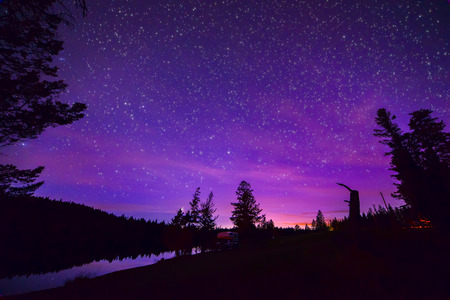 Forest and Lake with Purple Stary night sky Foto de archivo