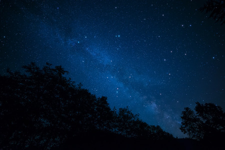 Amazingly peaceful photo of the milky way above silhouetted trees. Stock Photo