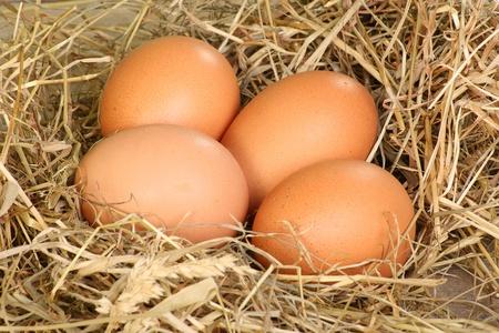 cholesterol free: four freerange eggs in hay